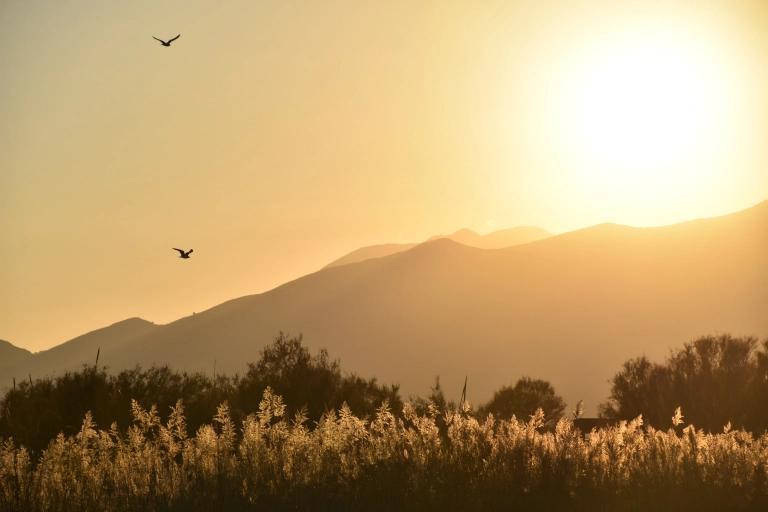 La crise de la biodiversité et ses liens étroits avec le changement climatique